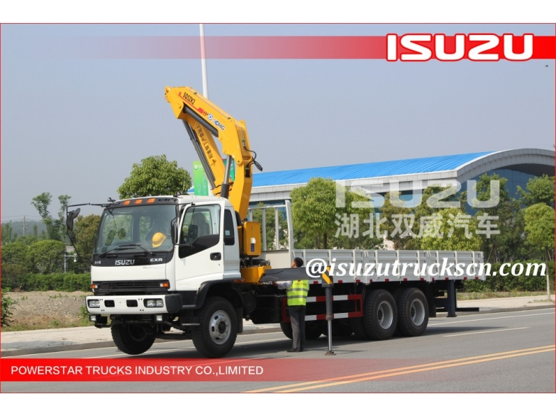 Ghana custom made 10 ton telescopic boom truck mounted crane for sale