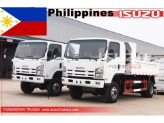 philippines ISUZU 5 ton 4x4 mini dump tipper truck for sale