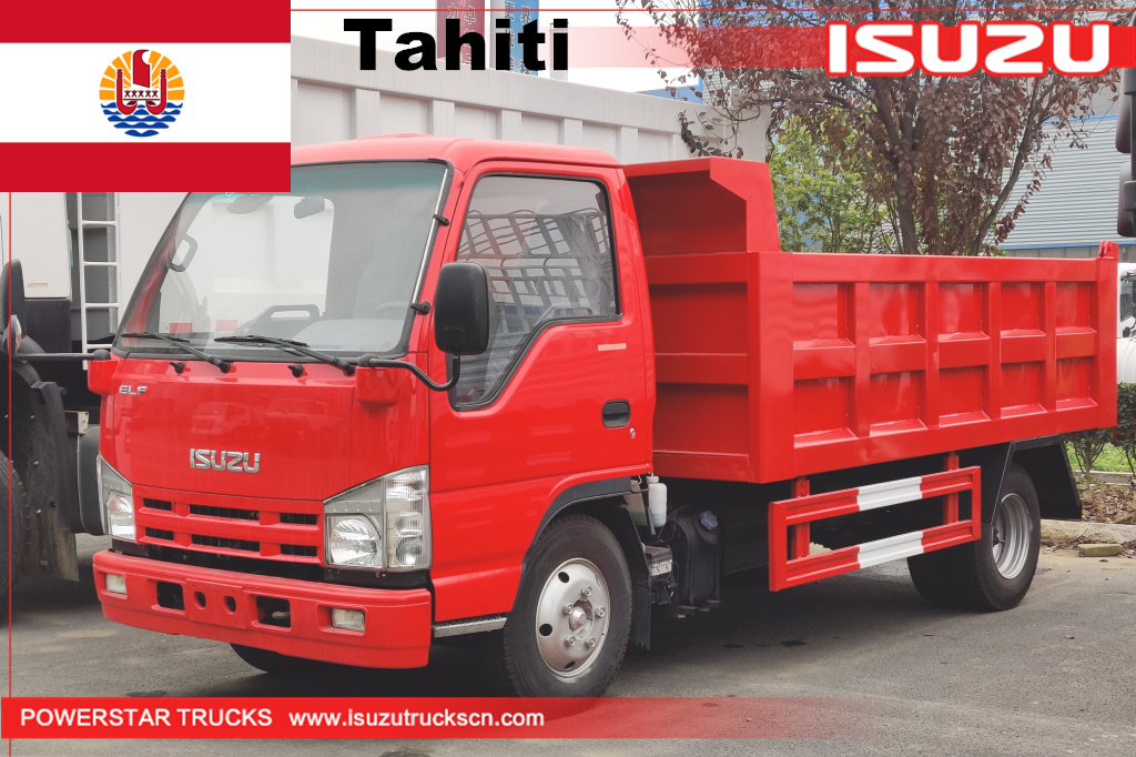 Tahiti - 1 unit ISUZU mini elf Dump Tipper Truck