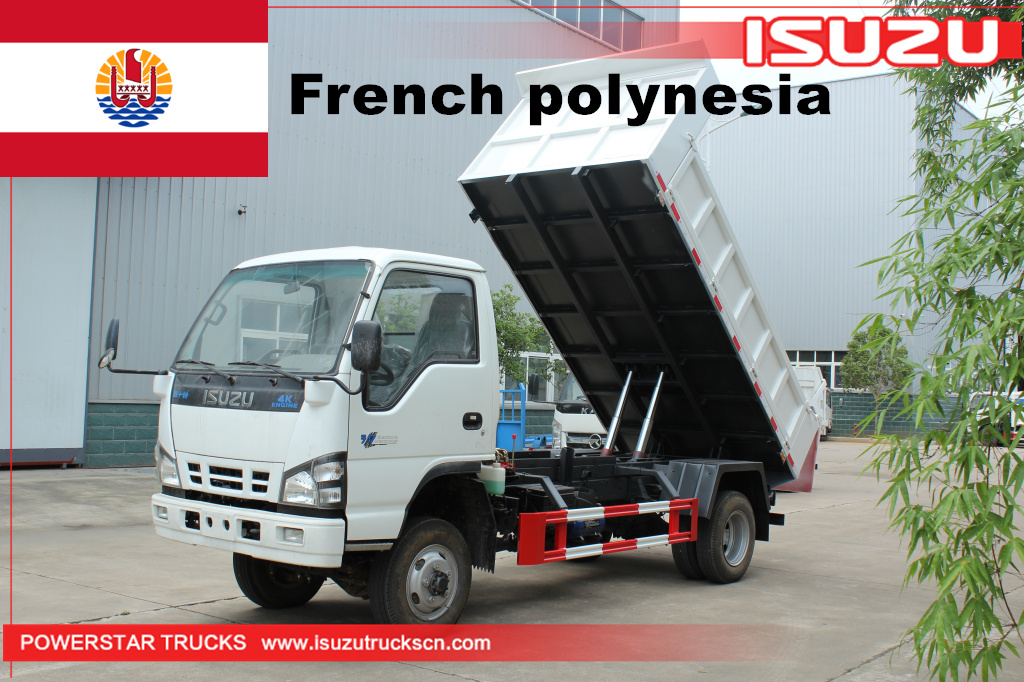 French Polynesia - 1 unit ISUZU NKR 4*4 Dump Tipper Truck